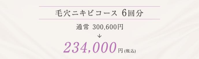 毛穴ニキビコース 234,000円(税込)